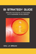 BI Strategy Guide
